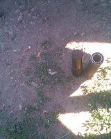 post-2055-1279091329_thumb.jpg