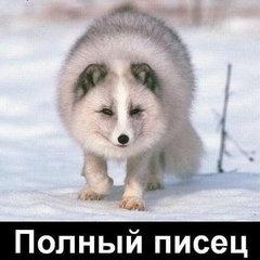 НиколайКа